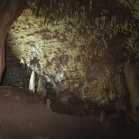 Interior of cave near Nahariya where skull was found inside (Photo: AP) (Photo: AP)