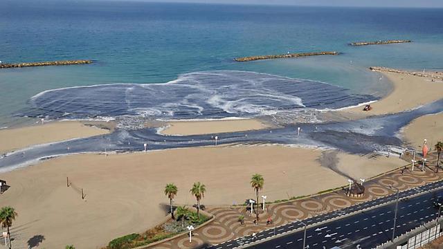 """עלול לגרום למחלות מעי - זיהום ים בדולפינריום בת""""א (צילום: שימי) (צילום: שימי)"""