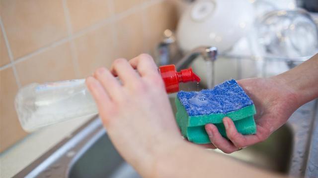 שיירי מזון ולכלוך בסביבה לחה ורטובה. מטלית לניקוי כלים (צילום: shutterstock) (צילום: shutterstock)
