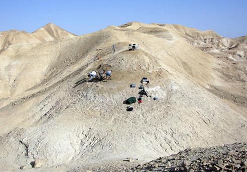 אזור החפירה הארכיאולוגית בערבה (באדיבות מרכז מדע ים המלח והערבה)