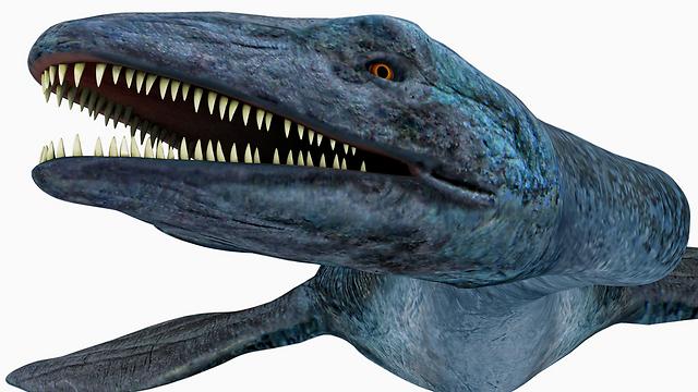 הדמיה של האלאסמוזאור. ניזון בעיקר מדגים (צילום: shutterstock)