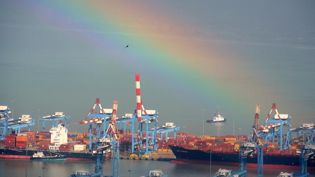נוף לנמל (צילום: מונט גלפז) (צילום: מונט גלפז)