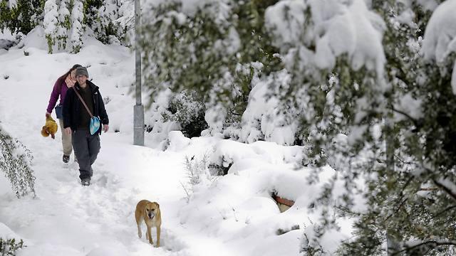 מטיילים בשלג בירושלים (צילום: AP) (צילום: AP)