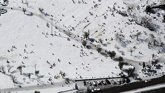 גן סאקר (צילום: אילן ארד, lowshot.com) (צילום: אילן ארד, lowshot.com)