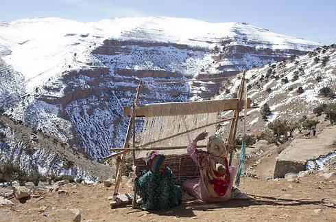 הנשים הברבריות אורגות שטיחים מסורתיים (צילום: רויטרס) (צילום: רויטרס)