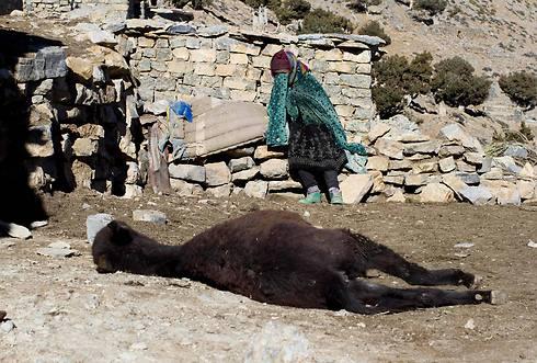 אישה מקומית מתאבלת אל הפרד שלה שמת ממחלה (צילום: רויטרס) (צילום: רויטרס)