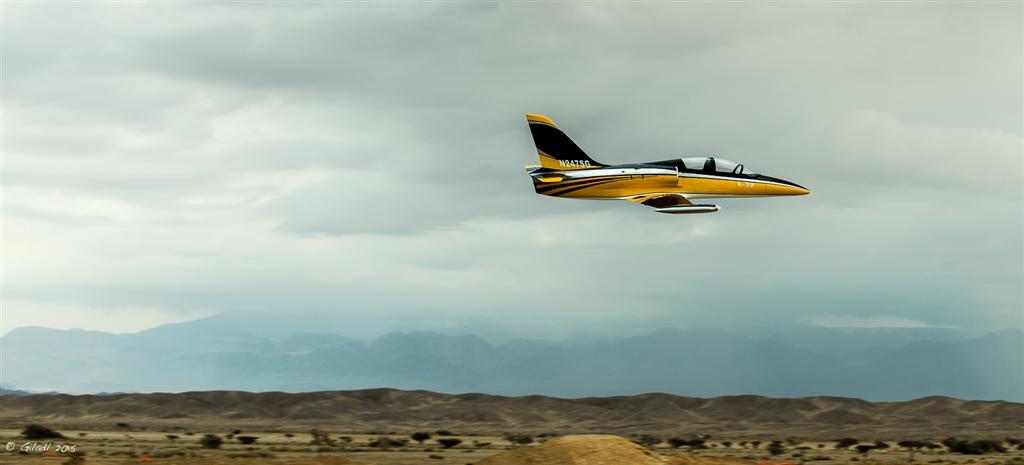 נראה כמו העתק מדויק של מטוס אמיתי (צילום: גלעד לבני) (צילום: גלעד לבני)