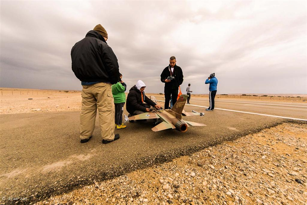 מלטפים ומטפלים. טיסנים בערבה (צילום: גלעד לבני) (צילום: גלעד לבני)