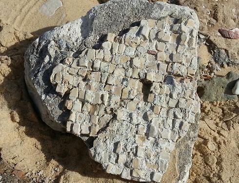 The mosaic found on the beach (Photo: Tomer Menshari)