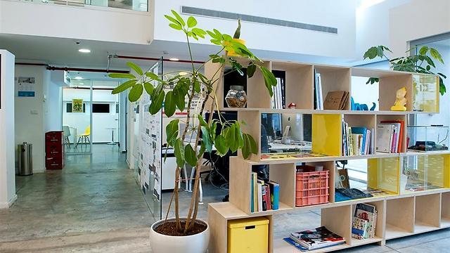 הספריה משמשת כחוצץ וכתצוגה (צילום: גלית דויטש) (צילום: גלית דויטש)