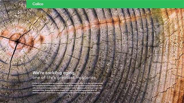 פרויקט קליקו. המוקד - בריאות, רווחה ותוחלת חיים ()