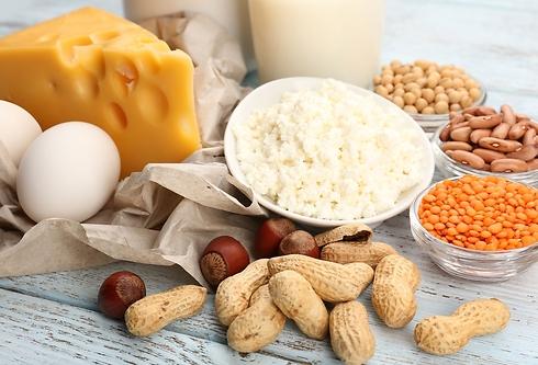 חלבונים. אין סכנה בצריכה עודפת (צילום: shutterstock) (צילום: shutterstock)