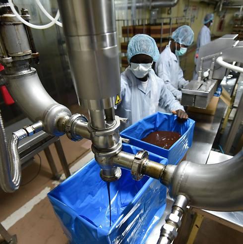 שוקולד במפעל Cemoi הצרפתי (צילום: AFP) (צילום: AFP)