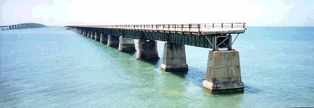 """""""כל העולם כולו גשר צר מאוד"""" (צילום: סיגלית בר)"""