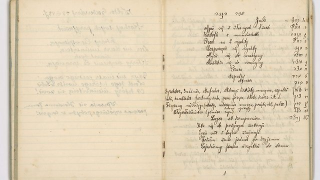 The alternative Haggadah inside the diary