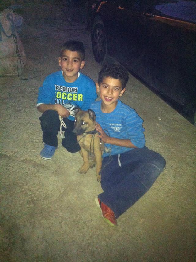 ילדי משפחת אבו-ואסל עם הכלב פוקס (צילום: באדיבות משפחת אבו-ואסל)