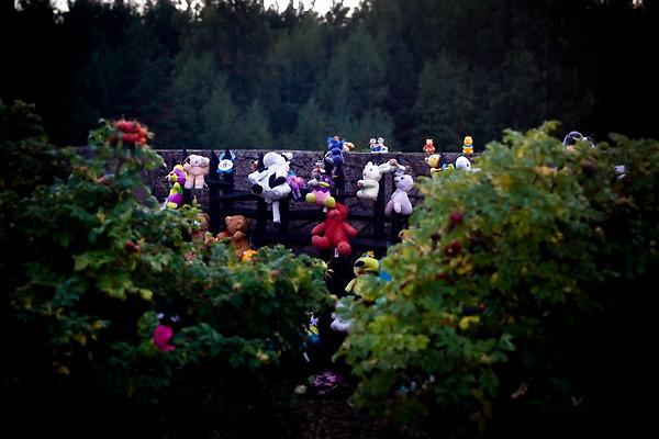 בובות ופרחים כסמל להנצחת אלו שלא הספיקו לטעום את טעם החיים (צילום: Anatoly V. Istomin)