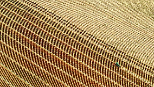 חקלאי מעבד את אדמתו בגליל (צילום: ישראל ברדוגו )