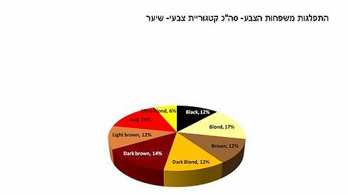 סך הכל: 38% משוק צבעי השיער אלה גווני חום ו-35% מהשוק זה בלונד (צילום: דודי מוסקוביץ') (צילום: דודי מוסקוביץ')