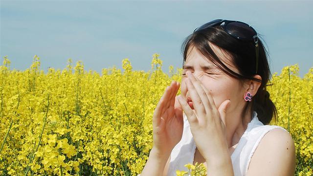 אלרגיה בשרב. פחות האבק, יותר הצמחים (צילום: shutterstock) (צילום: shutterstock)