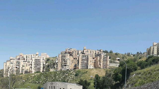 """צפת. כל העיר תגלוש במדרון (צילום: אחיה ראב""""ד) (צילום: אחיה ראב"""