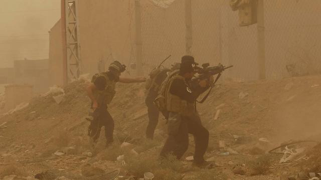 צבא עיראק נלחם מול דאעש ברמאדי - וניגף (צילום: AP) (צילום: AP)