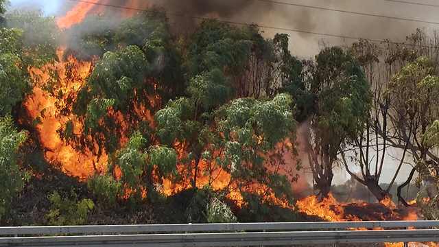 Fire ranging near Highway 1 (Photo: Raz Shershov)