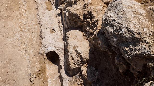 (צילום: צילום: אסף פרץ, באדיבות רשות העתיקות ) (צילום: צילום: אסף פרץ, באדיבות רשות העתיקות )
