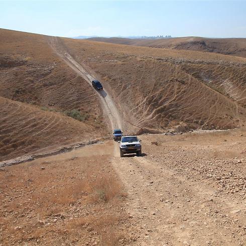 (צילום: עינב ברזני) (צילום: עינב ברזני)