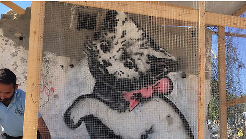 Banksey in Gaza (Photo: CNN)