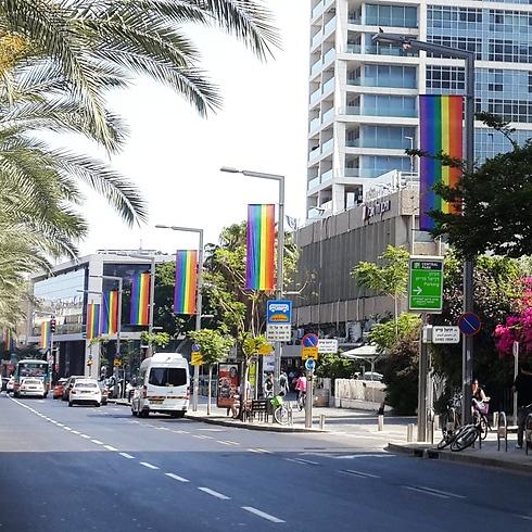 Ibn Gabirol street (Photo: Yaron Brener)