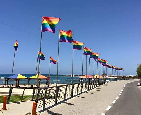 Hilton beach (Photo: Shaked Cohen)