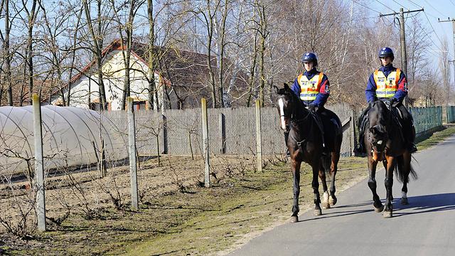 שוטרים הונגרים בגבול עם  סרביה (צילום: AP) (צילום: AP)