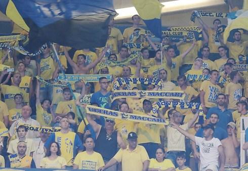 הקהל הצהוב (צילום: ראובן שוורץ) (צילום: ראובן שוורץ)