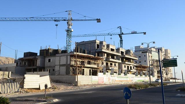באר שבע  (צילום: הרצל יוסף) (צילום: הרצל יוסף)