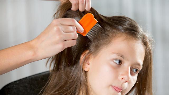 להשלים את הטיפול בסירוק של השיער (צילום: shutterstock) (צילום: shutterstock)