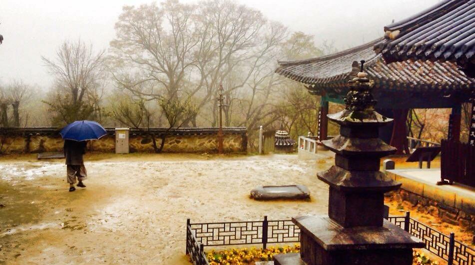 מקדש בונגג'אונסקה המסתורי  (צילום: שי זדה)