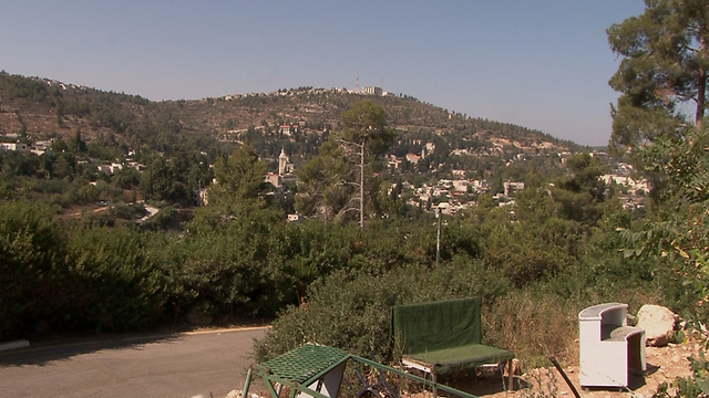 The Jerusalem Forest, Western Jerusalem's green symbol (Photo: Eli Mandelbaum)