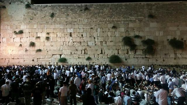 Tisha B'Av prayers at the Western Wall (Photo: Eli Mendelbaum)