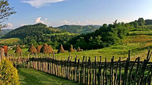חמישים גוונים של ירוק - בסרביה (צילום: מאגמה)
