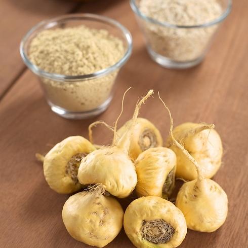 """ניתן לצרוך את המאקה כשורש, אבקה או מיצוי הצמח (צילום"""" יח""""צ) (צילום"""