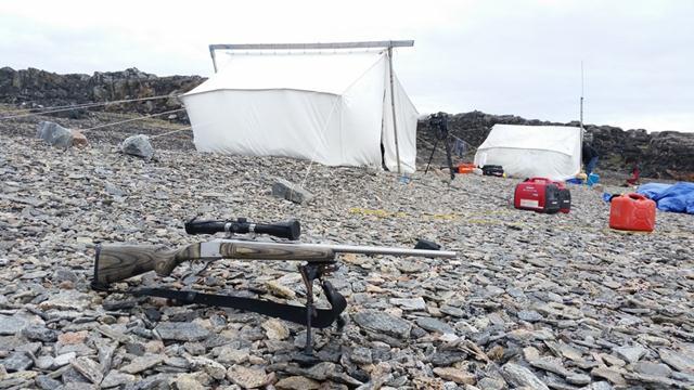 רובה להגנה בלבד. חיים בשממה לקראת המסע לחיפוש דובי הקוטב (צילום: יונתן ניר) (צילום: יונתן ניר)
