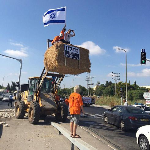 החקלאים הגיעו גם לצומת תל עדשים בעמק יזרעאל (צילום: המועצה האזורית יזרעאל) (צילום: המועצה האזורית יזרעאל)