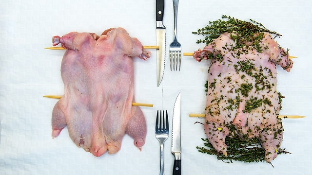 תרנגולת במיטבה, שף ירון קסטנבוים (צילום: ירון ברנר)