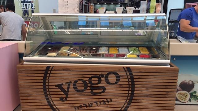 """Yogo (צילום: יח""""צ) (צילום: יח"""