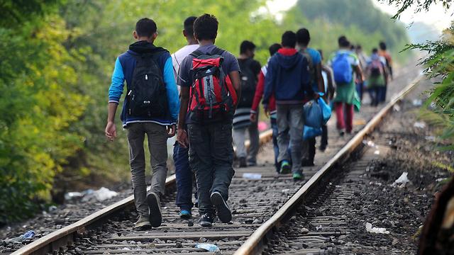 בדרך לאירופה. פליטים צועדים על מסילת רכבת בהונגריה (צילום: AFP) (צילום: AFP)