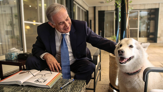 Биньямин Нетаниягу и собака Кая