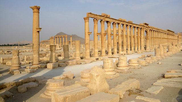 העיר העתיקה תדמור. ארכיון (צילום: רויטרס) (צילום: רויטרס)