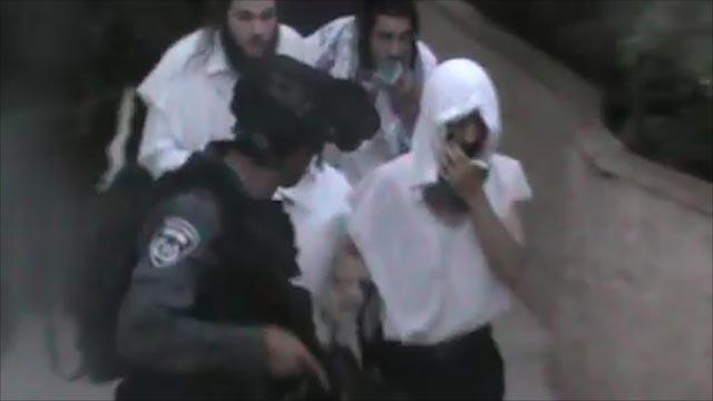כוחות הביטחון מחלצים את התיירים  (צילום: נאייף דענא, בצלם) (צילום: נאייף דענא, בצלם)