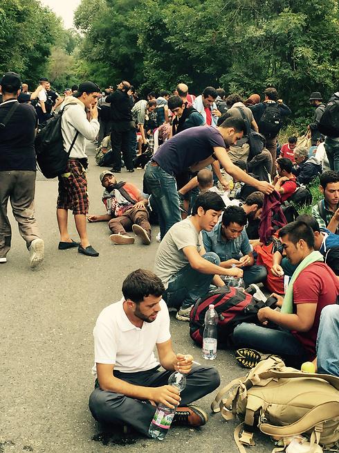 לשלוח מסר של תקווה לעולם. פליטים בהונגריה (צילום: תומי הירש) (צילום: תומי הירש)